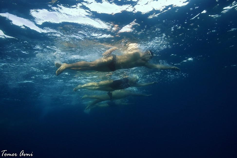 לשחות או לא לשחות | צילום: תומר אבני