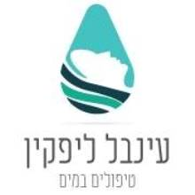 עינבל ליפקין